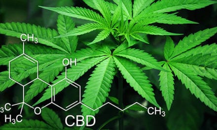 Too many bureaucratic hurdles for cannabis research