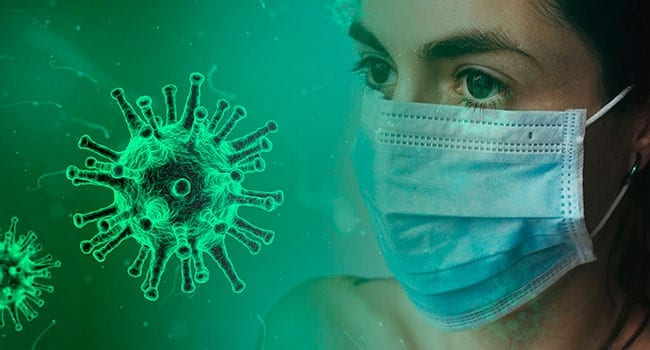 Standard surgical masks as good as N95 for family doctors: review