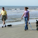 coligny-beach-action-tall-and-short-photo-by-mike-keenan