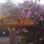 the-sign-to-our-little-cabina-in-amid-the-flowers-and-trees