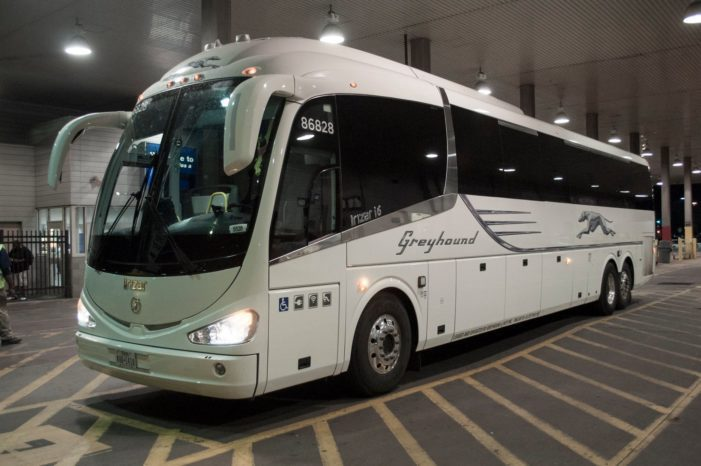 Greyhound lacked the vision and adaptability to survive