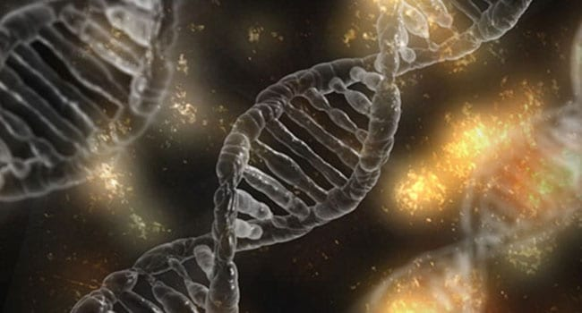 Cool the hype around genetics and health care
