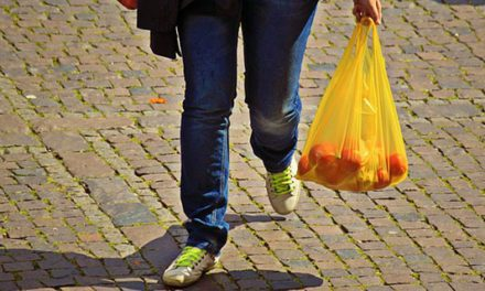 The plastic bag pollution paradox