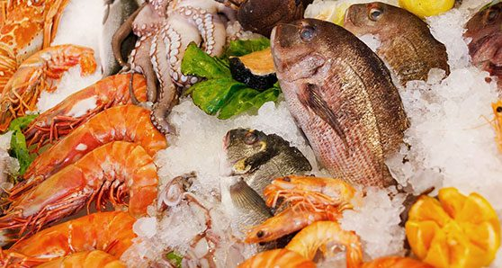 Fishing for seafood fraud report of questionable value