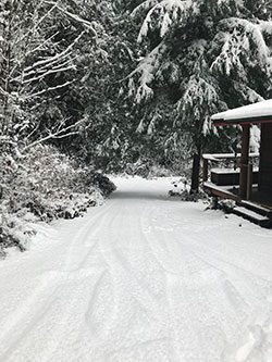 The Skelhp roadway with 30cm of snow