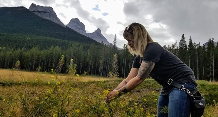 Chef Tracy Little foraging Canmore Alberta