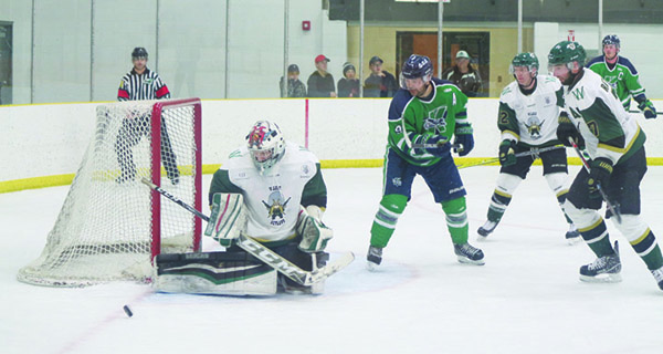Regular seasons nearly done for senior hockey leagues